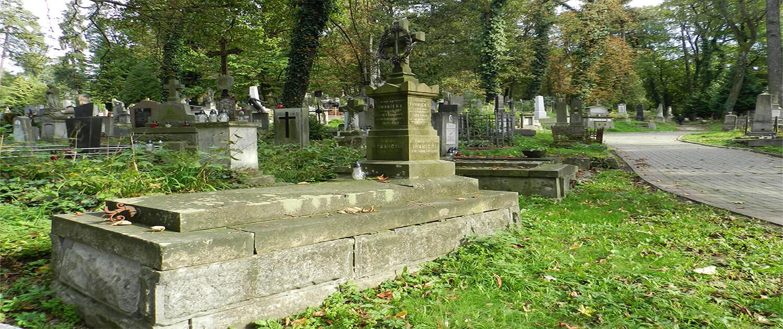 Cmentarz Łyczakowski grobowiec rodziny Iwanickich pole numer 11.