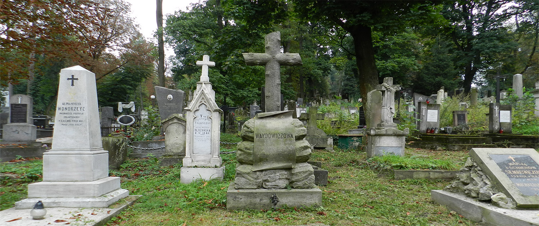 Cmentarz Łyczakowski pochowane osoby: Franciszek Wondrzeyc, Teresa Waydowiczowa, Marja Semkowiczowa, Michalina Schier, pole numer 8.