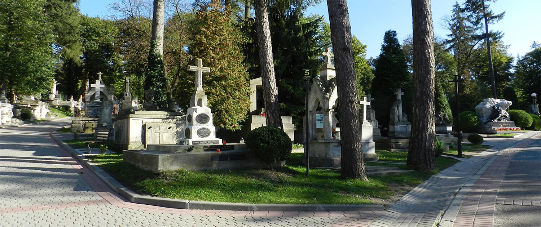 Cmentarz Łyczakowski widok ogólny groby pole numer 5.