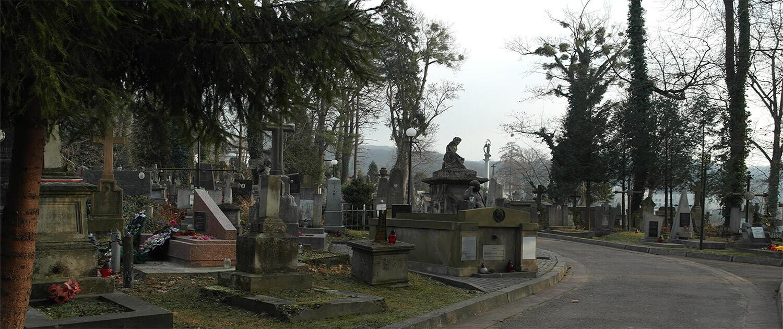 Cmentarz Łyczakowski widok ogólny pole numer 51.