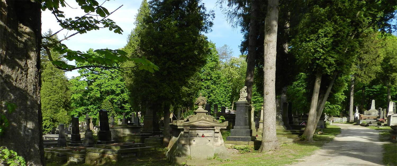 Cmentarz Łyczakowski widok ogólny pole numer 68.